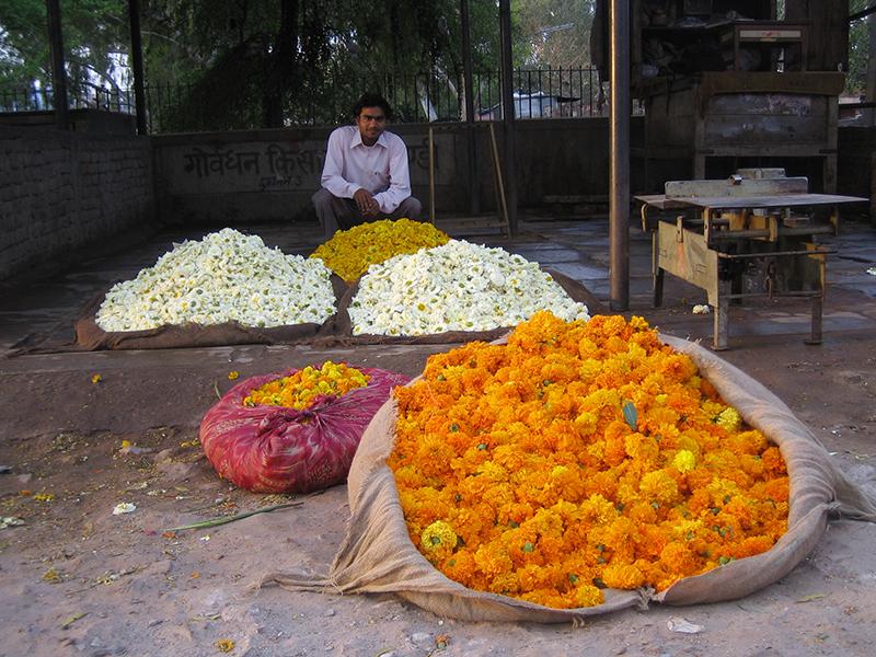 Mala Market.004